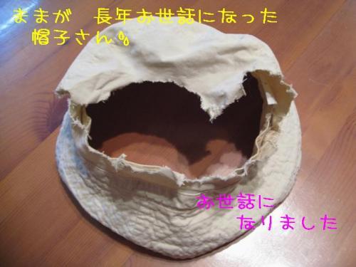 2009414osewaninarimasita