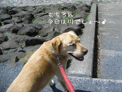2009415kawa2