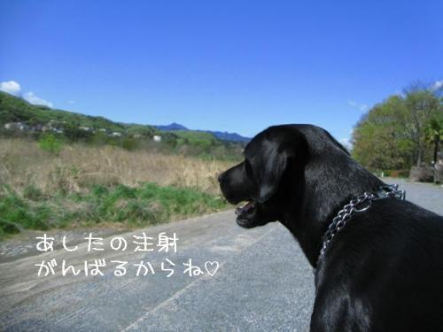 2009415kawa