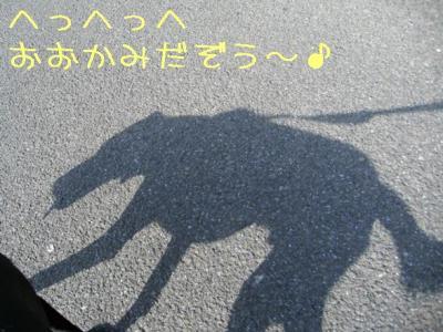 2009518おおかみさん