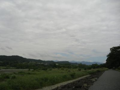 2009525donnyori