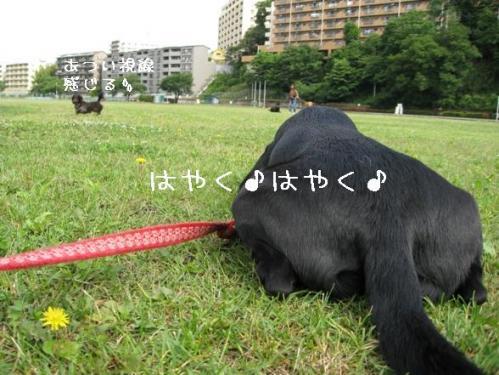 200961hayakuhayaku