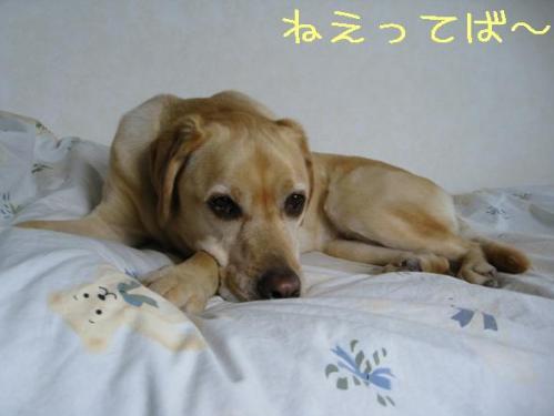 200967saisoku
