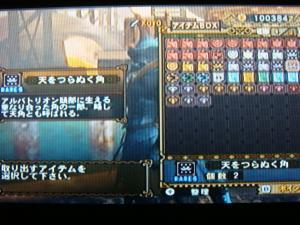 DSC01422_convert_20091031175214.jpg