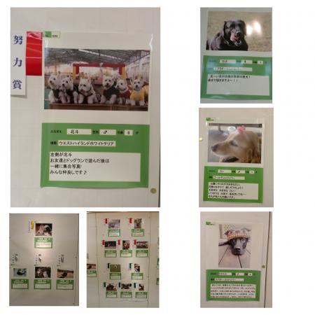 0103sss_繝壹・繧ク000_convert_20100103230742