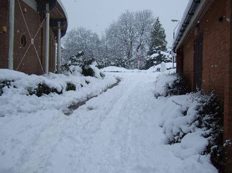 1月の雪5
