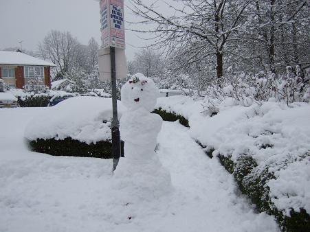 1月の雪6