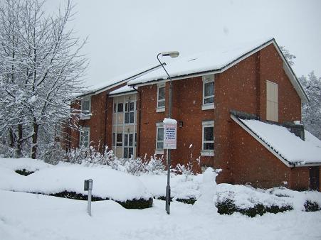1月の雪7
