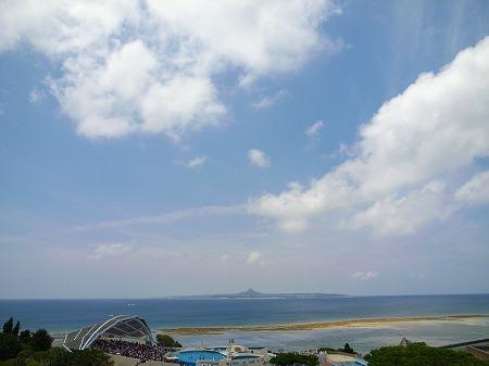 美ら海水族館23