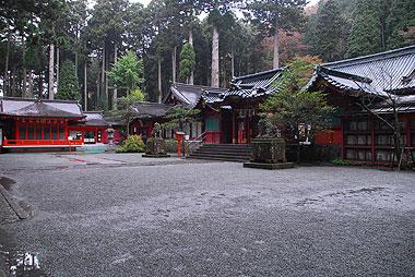 200811085.jpg