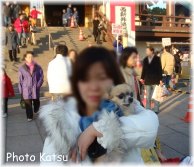 P01062008003-1.jpg