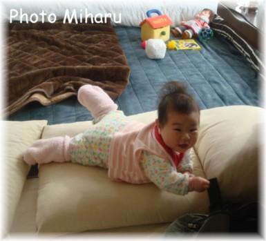 P01202008003-1.jpg