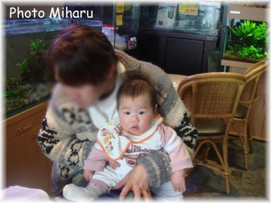 P01262008021-1.jpg