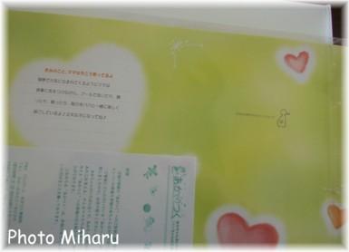 P03072007009-1.jpg