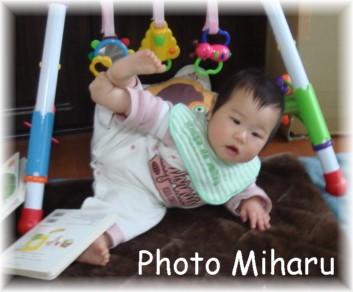 P03242008005-1.jpg