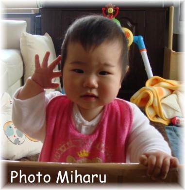P04022008014-1.jpg
