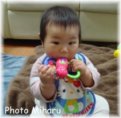 P04042008011-1.jpg