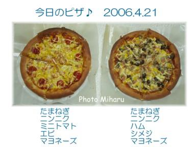 P04212006003-1.jpg
