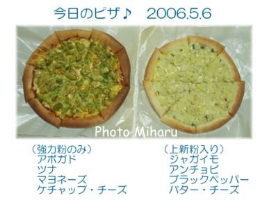 P05062006031-1.jpg