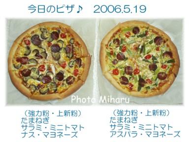 P05192006001-1.jpg