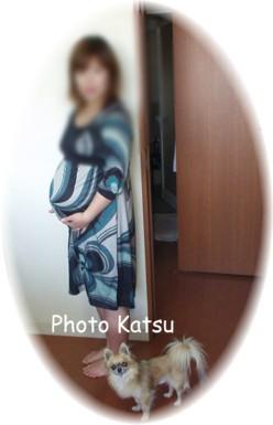P05202007012-1.jpg