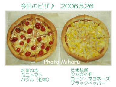 P05262006016-1.jpg