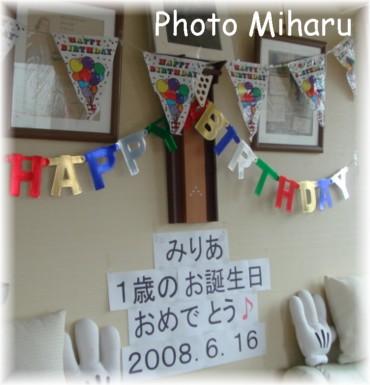 P06142008011-1.jpg