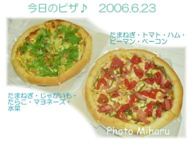 P06232006011-1.jpg