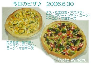P06302006002-1.jpg