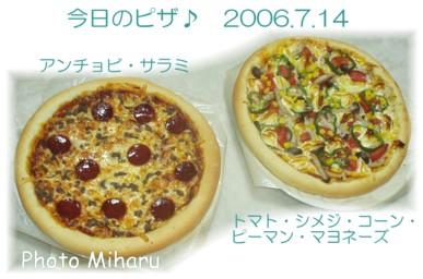 P07142006033-1.jpg