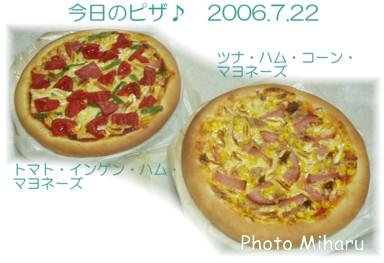 P07222006001-1.jpg