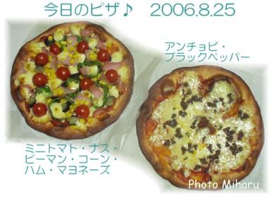 P08252006003-1.jpg