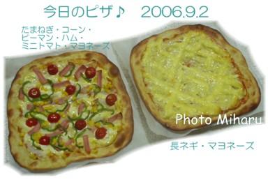 P09012006011-1.jpg