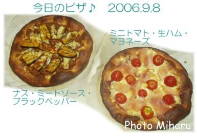 P09082006031-1.jpg