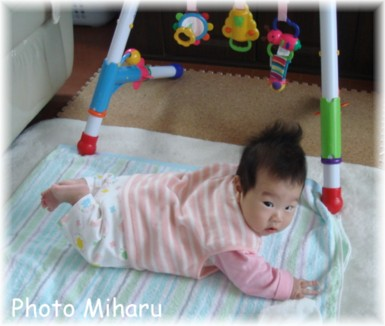 P10192007006-1.jpg
