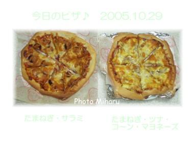 P1029002-1.jpg