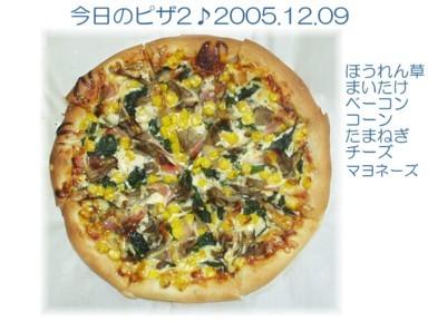 P1209003-1.jpg