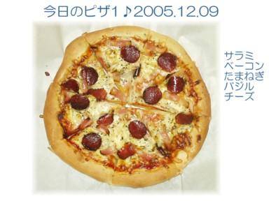 P1209004-1.jpg