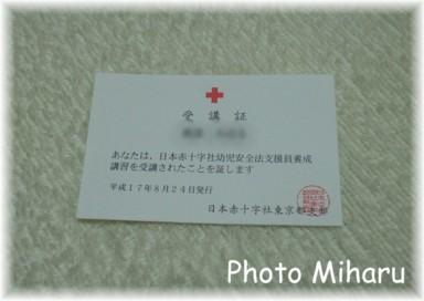 P8240001-1.jpg