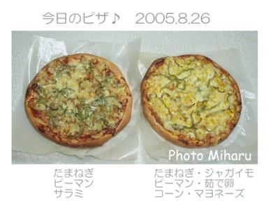 P8260006-1.jpg