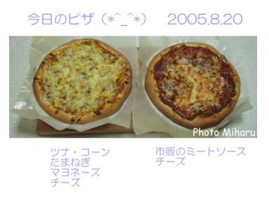 Piza8200010-1.jpg