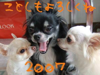 2007_0103_0019.jpg