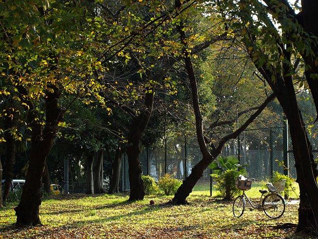 2007_11180032-s.jpg