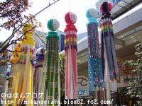 七夕2008-8