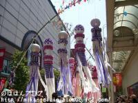 七夕2008-4