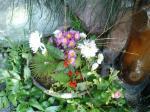 町で見かけた花シリーズ0721