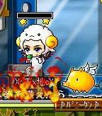 Maple091026_214614.jpg