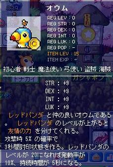 Maple091229_010421.jpg