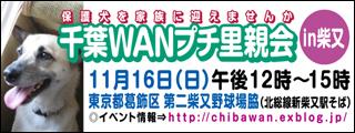 chibawan_satooyakai_shibamata320x120.jpg