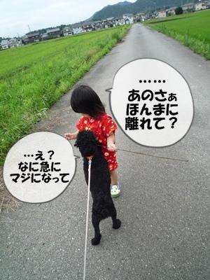 柳沢シンゴP1090253